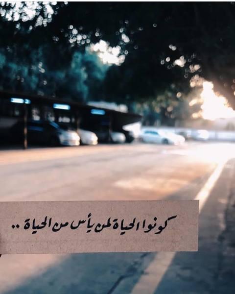 المصراوية - صفحة 91 230029