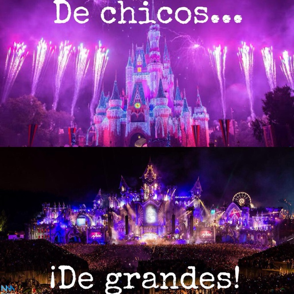 Tomorrowland At Diexer1234 60 Answers 65754 Likes